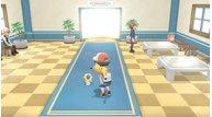Hex nut pokemon meltan 092518 2