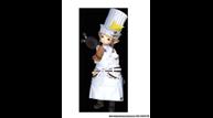 Ffxiv pub 52nd pll 08 culinarian