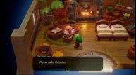 Zelda links awakening switch 03