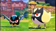 Pokemon sword shield shiny charm hunting chain odds
