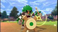 Pokemon-Sword-Shield_01092020_05.jpg