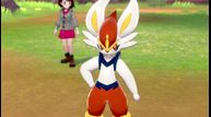 Pokemon-Sword-Shield_01092020_08.jpg