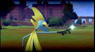 Pokemon-Sword-Shield_01092020_11.jpg