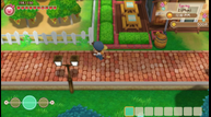 Story-of-Seasons-Friends-of-Mineral-Town_20200327_18.png