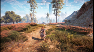 Horizon_Zero_Dawn_PC_FOV_Low.png