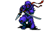 8-Bit-Adventures-2_Master-Ninja.png