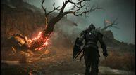 Demons-Souls_20200916_04.jpg