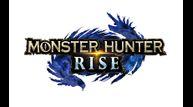 MH_RISE_logo_RGB.jpg