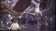 Monster-Hunter-World-Iceborne_20200928_07.jpg