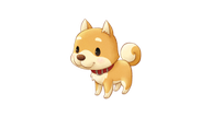 Story-of-Seasons_Pioneers-of-Olive-Town_Shiba.png