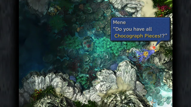ff9_chocobo_hot_cold_chocograph_pieces.png