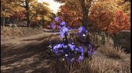 Swords-of-Legends-Online_20210419_17.png